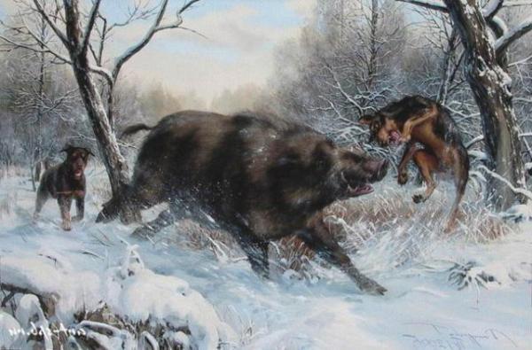 Команды собакам на охоте