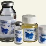 Травматин – помощь при травмах у собак