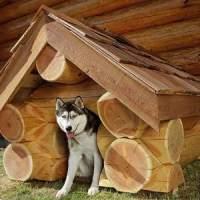 будку для собаки своими руками