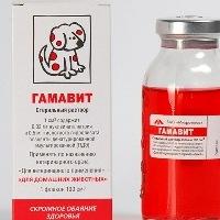 Гамавит для собак