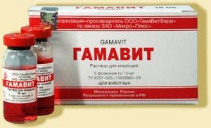 характеристики препарата Гамавит для собак фото
